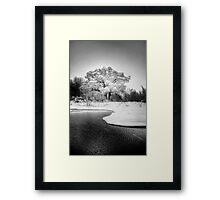 Winters Tree Framed Print