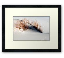 Monahans White Sand Hills ~ Desert Life ~6 Framed Print