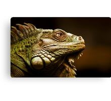 Giant Iguana Canvas Print