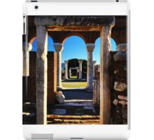 Framed Doorways iPad Case/Skin