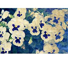 Monet's Dream Photographic Print