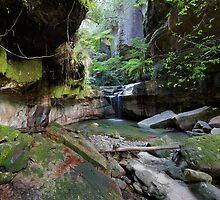 Carnarvon Gorge, Qld by Steve Axford