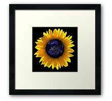 Sunflower Eclipse Earth Sun Framed Print