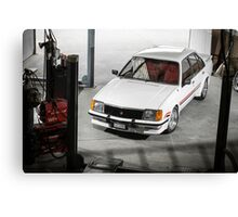Craig Helmer's HDT VC Commodore Canvas Print