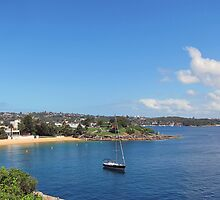 LONE SAILOR - CAMP COVE SYDNEY HARBOUR by springs