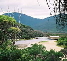 Tidal River Wilsons Prom NP Vic by OzNatureshots