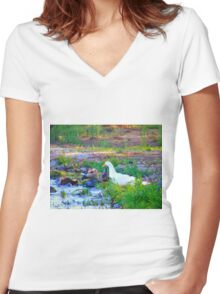 Water and sunshine Women's Fitted V-Neck T-Shirt