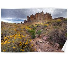 Spring in the Superstitions Poster