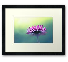 It's time to shine Framed Print