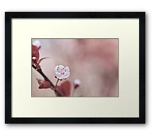 Surrounded by your embrace Framed Print