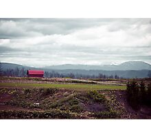 A Disrepaired Red Shack in countryside Hokkaido, Japan Photographic Print