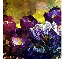 Spring Has Sprung Choral Rhapsody Photographic Print