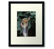 I am not slimey Framed Print