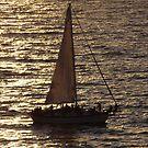 Sailing in the late Sun - Navegando a Vela en la Puesta del Sol by PtoVallartaMex