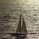 Sailing Boat - Velero by PtoVallartaMex