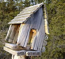 Country Home For Sale, Great Location, A Bit Of A Fixer Upper....Great Price! by Tracy Faught