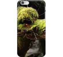 Camel Tree iPhone Case/Skin