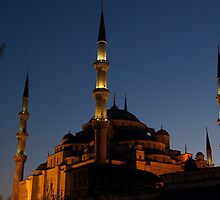 Blue Mosque at night - Turkey by Claire Haslope
