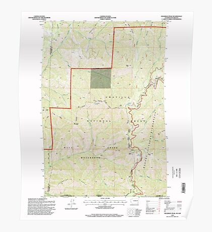 USGS Topo Map Washington State WA Deadman Peak 240798 1995 24000 Poster