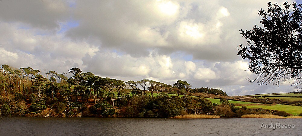 LOE POOL - Another view. by AndyReeve