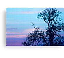 Tree on a pastel sky Canvas Print