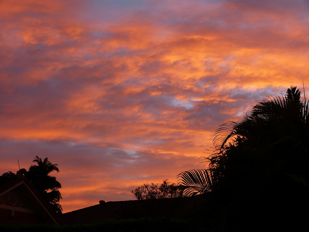 Brissie sunrise by PhotosByG