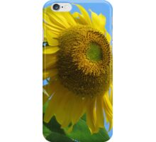 Facing the Wind Flower iPhone Case/Skin