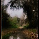 my alternate route by Jill Auville