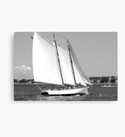 Sailing!  Black and White Canvas Print