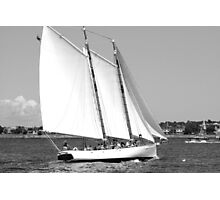 Sailing!  Black and White Photographic Print