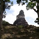 Tikal by RigidParadise