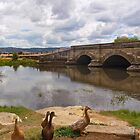 Ross bridge by Colgal