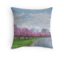 1st Day Of Spring  Throw Pillow
