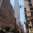 Madison Avenue New York by Colgal