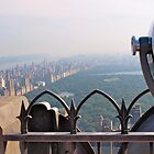 Central Park from Rockefeller Centre by Colgal