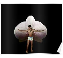 On Orchid Wings Poster