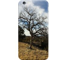 Earth's View iPhone Case iPhone Case/Skin