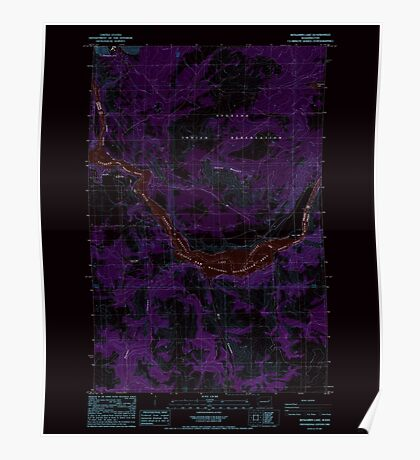 USGS Topo Map Washington State WA Benjamin Lake 240017 1985 24000 Inverted Poster