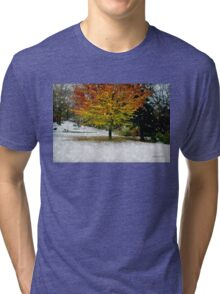 Beech Tree ~ Caught in a Snow Flurry Tri-blend T-Shirt