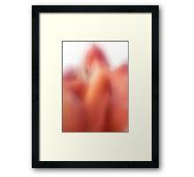 Encounternance Framed Print