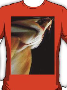 Libertine and the Vestil T-Shirt