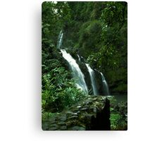 Three Bears Falls in December Canvas Print