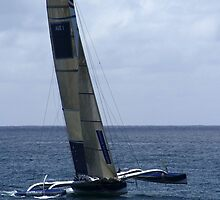 Team Australia Trimaran by Noel Elliot