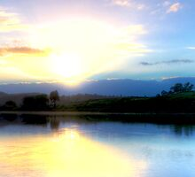 Wingham Brush Sunrise by Matthew Jones