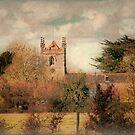 *Fields & Forests of Dorset* Calendar by naturelover