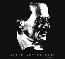 Erwin Schrödinger  by mattgbush