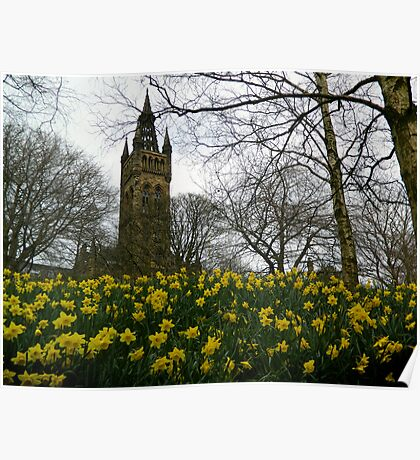 Glasgow University in the Spring Poster