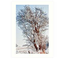 Tree Full of Snow Art Print