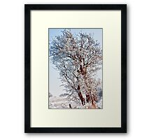 Tree Full of Snow Framed Print