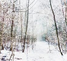 Winter Wonder Woodland by Vicki Field